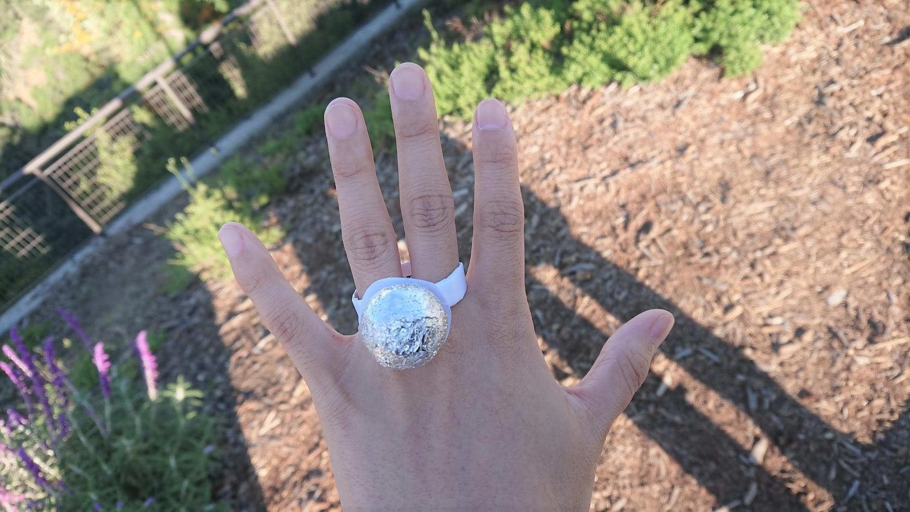 国際結婚、外国人フィアンセにプロポーズを催促!結果はいかに?!